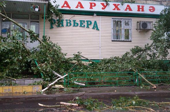 Лесоповал по-казански: гроза раскидала деревья как пушинки