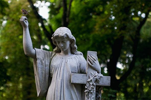 В Казани появится новое современное кладбище площадью 86.6 га