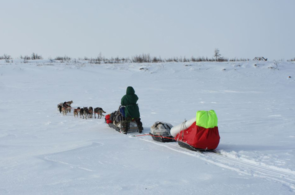 К Путоранским горам на собаках